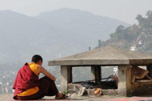 Nepal (Katmandú) 2010
