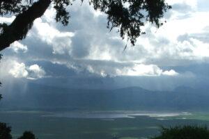 Ngorongoro 2007
